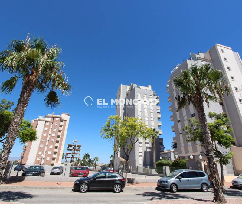 Apartment - Sale - Guardamar del Segura - SUP 7 - Sports Port