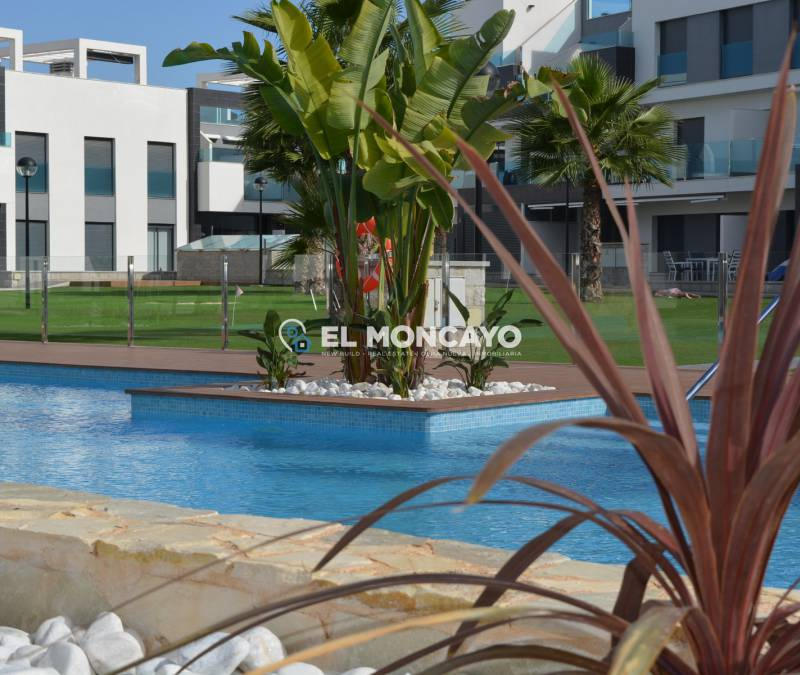 Appartement - Verkoop - Guardamar del Segura - El Raso