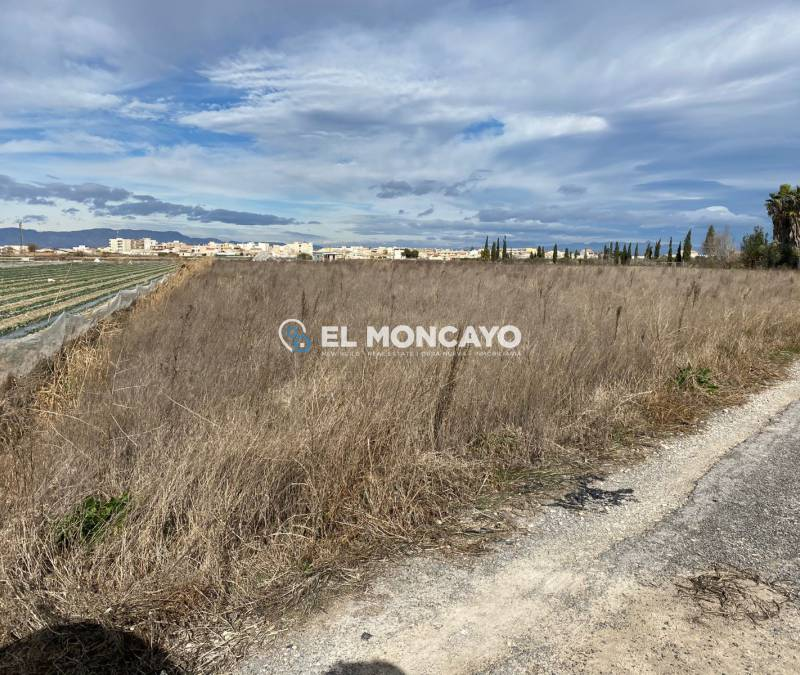 Plot - Sale - Rojales - Rojales