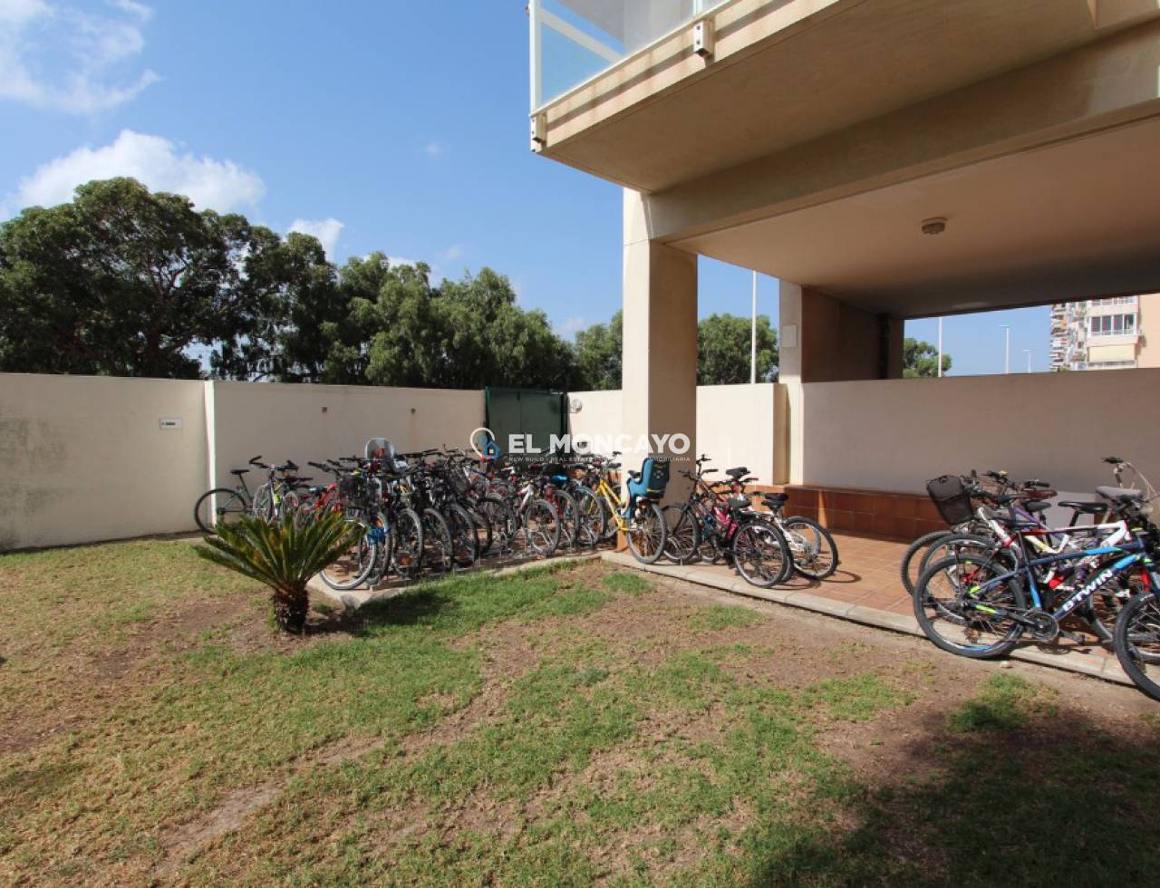 Sale - Apartments - Guardamar del Segura - SUP 7 - Sports Port